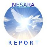 NESARA Report